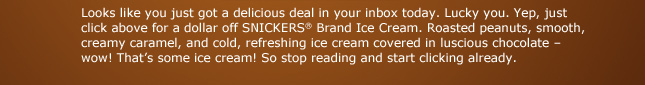 Looks like you just got a delicious deal in your inbox today.  Lucky you.  Yep, just click above for a dollar off SNICKERS® Brand Ice Cream.  Roasted peanuts, smooth creamy caramel, and cold, refreshing ice cream covered in luscious chocolate - wow!  That's some ice cream! So stop reading and start clicking already.